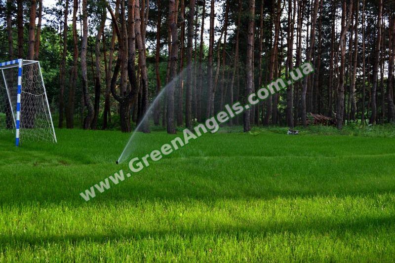 Фото полива газона роторами